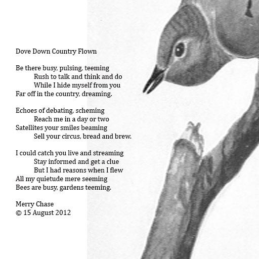 Dove Down