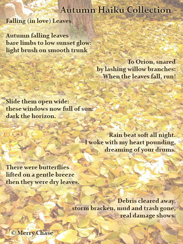Autumn Haiku Collection